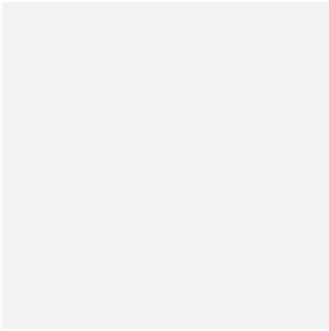 朗玥科技团队