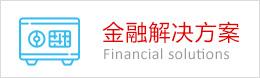 金融解决方案定制