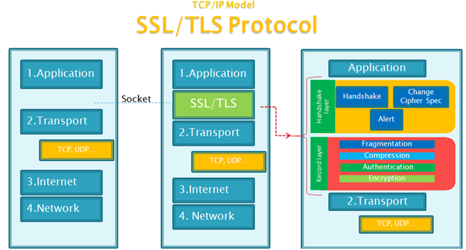 什么是ssl,tls?两者有什么区别?